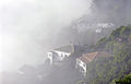 Misty houses, Mount Victoria, Wellington, New Zealand, 1 July 2006 - Flickr - PhillipC.jpg