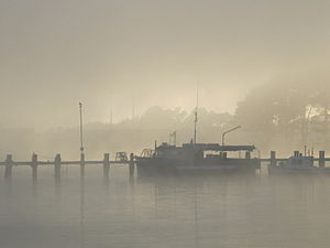 Riverton, New Zealand - Image: Misty morning in Riverton