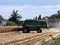 Moissonnage du maïs en septembre 2020, rue des Andrés, Saint-Maurice-de-Beynost, Ain, France (3).jpg