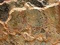 Monumento funerario romano-detalle de las pinturas de los muros.jpg