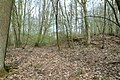 Motte op de Butsberg te Tielt-Winge - 371322 - onroerenderfgoed.jpg