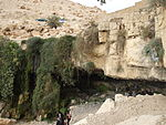 Mouses springs Madaba JO 1.JPG