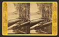 Mouth of Oklawaha River, Fla, from Robert N. Dennis collection of stereoscopic views.jpg