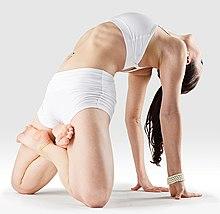 220px Mr yoga half kamalamuni yoga asanas Liste des exercices et position à pratiquer
