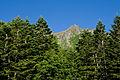 Mt.Yokodake 09.jpg