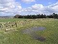 Muircleugh Stell - geograph.org.uk - 355791.jpg