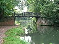 Murray's bridge over the Wey Navigation - geograph.org.uk - 64276.jpg