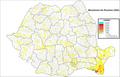 Musulmani Romania (2002).png