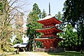 Nagusa-Jinjya Hyogo002.jpg