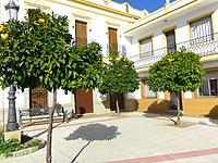 Naranjos en Extremadura.JPG