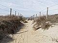 Nationaal Park Kennemerland (40656503824).jpg