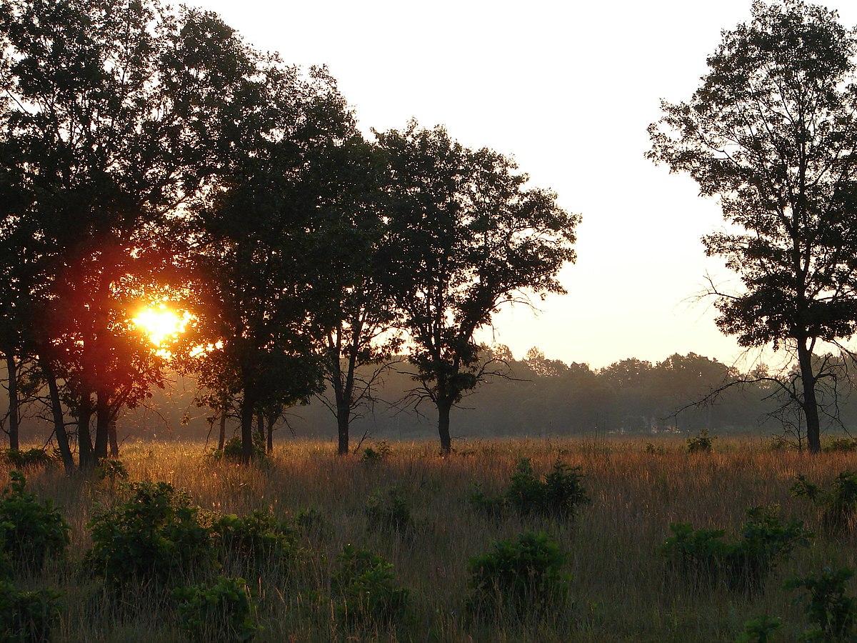 S 90 3 >> Necedah National Wildlife Refuge - Wikipedia