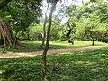 New Town, Polonnaruwa, Sri Lanka - panoramio.jpg