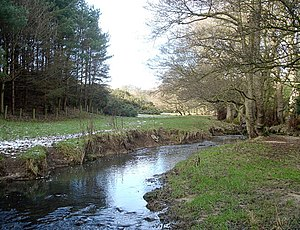 Newsham Beck - geograph.org.uk - 1704534