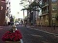 Nieuwe Amstelstraat.jpg