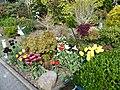OB Styrum Alstaden - Kleingartenanlage Rechenacker - 01.Mai 2015 - panoramio (6).jpg