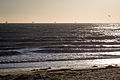 Oil rigs off California coast at Carpinteria State Beach 8175996969 o.jpg
