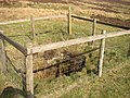 Old Coalmine Shaft - geograph.org.uk - 620862.jpg