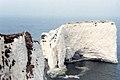 Old Harry Rocks, Swanage (150151) (9453264227).jpg
