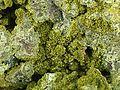 Olivenite-Gartrellite-209734.jpg