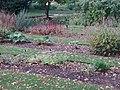 Order beds, Oxford Botanic Garden - geograph.org.uk - 247424.jpg