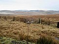Otterburn Ranges near Ridlees Cairn - geograph.org.uk - 658133.jpg
