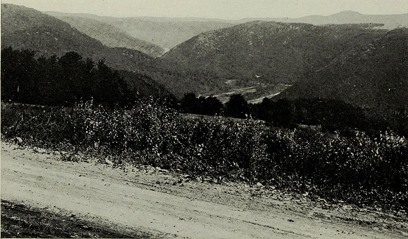 File:Over Mohawk Trail (1920) (14800110843).jpg