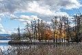 Pörtschach Halbinselpromenade Naturpark im Landschaftsschutzgebiet 18112019 7521.jpg