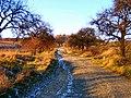 Původní cesta Fulnek–Vrchy 001.jpg