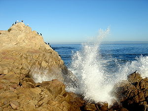 Pacific coast-California.JPG