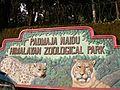 Padmaja Naidu Himalayan Zoological Park in Darjeeling.jpg