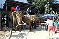Pak Chong, Pak Chong District, Nakhon Ratchasima, Thailand - panoramio (7).jpg