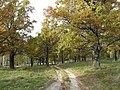 Panoramio-39827588.jpg