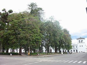 Parque Caldas 1