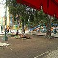 Parque de los patos.jpg