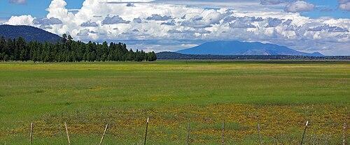 Mormon Lake Az >> Mormon Lake Wikipedia