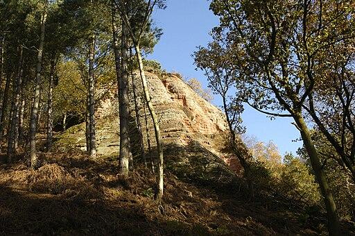 Peckforton Hills 2