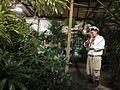 Performance Garden New Orleans Fringe Fest 2011 Bari Horn.JPG