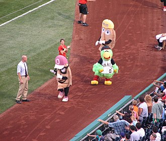 Great Pierogi Race - A Pierogie Race featuring (from left) Oliver Onion, Cheese Chester, and the Pirate Parrot.