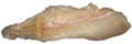 Pike fillet.png