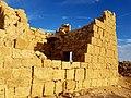 PikiWiki Israel 64983 sivta national park .jpg