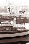 Piranski mandrač 1962.jpg