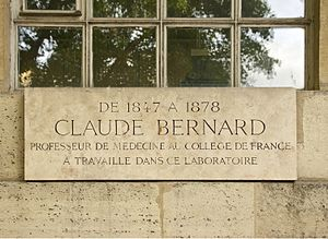 Commemorative plaque - Plaque in tribute to Claude Bernard, at Collège de France in Paris, France.