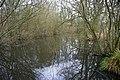 Pond between fields - geograph.org.uk - 1751299.jpg