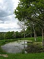Pond near Baldwin's Farm - geograph.org.uk - 1286046.jpg