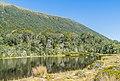 Pond near Lewis Pass 02.jpg