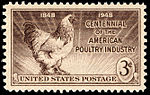 Poultry Industry Centennial 3c 1948 issue U.S. stamp.jpg