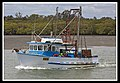 Prawn Trawler leaving Cabbage Tree Creek-1 (6310976913).jpg