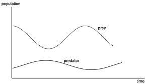 Continuous simulation - The predator/prey model