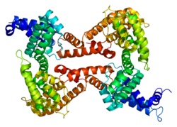 Protein GC PDB 1j78.png